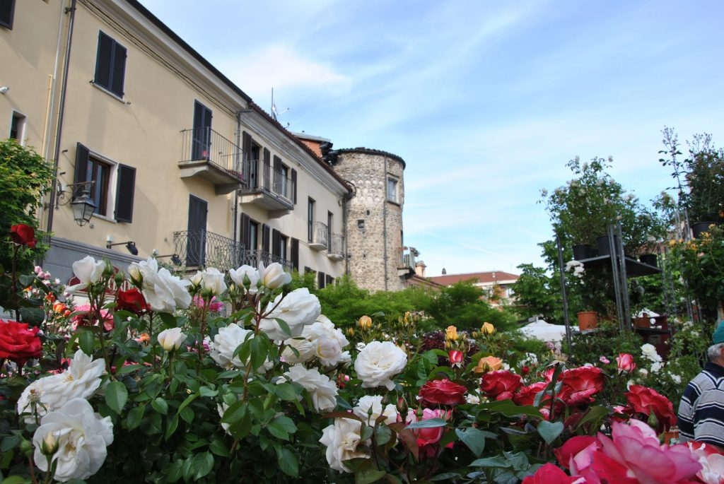 Maggionatura fiori cultura e ambiente risveglio popolare - Vendere casa popolare riscattata ...